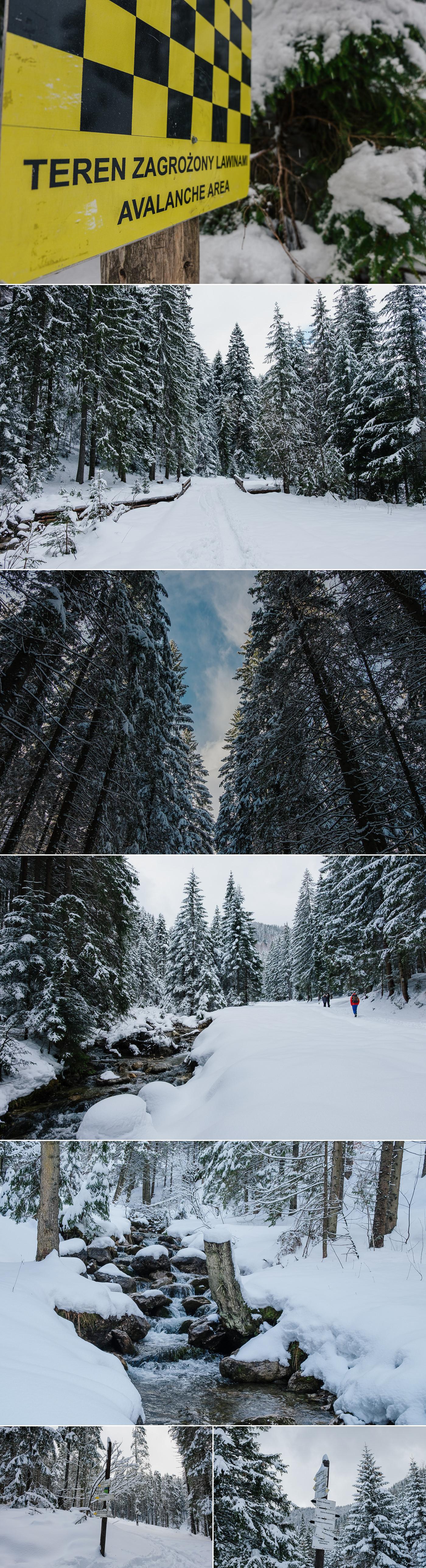 Zimawiosna_Piotr_Glodzik_