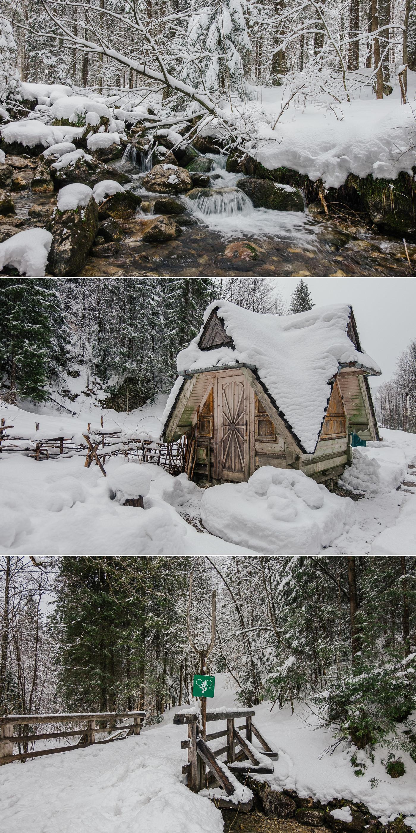 Zimawiosna_Piotr_Glodzik__3